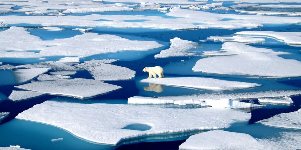Obama Takes Historic Action, Protects Arctic Ocean From Offshore Oil Drilling