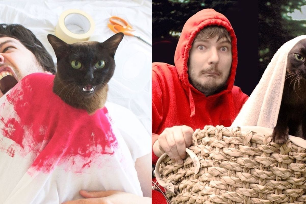 Guy and His Cats Recreate Famous Movie Scenes Together..