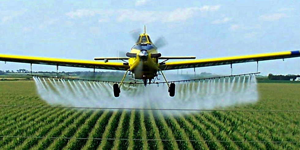 New USDA Data Shows 85% of Foods Tested Have Pesticide Residues