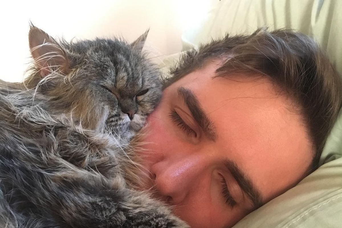 Couple Refuse to Give Up on Paralyzed Cat Even When Told Many Times to