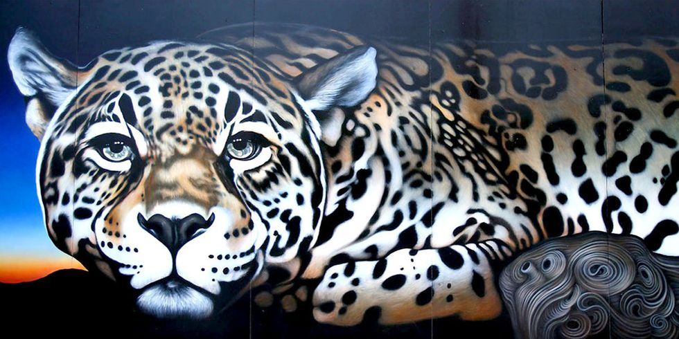 10 Endangered Species Murals Connect Communities to the Natural World