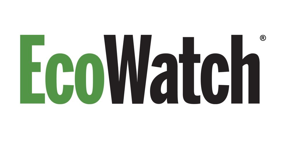 Job Openings at EcoWatch