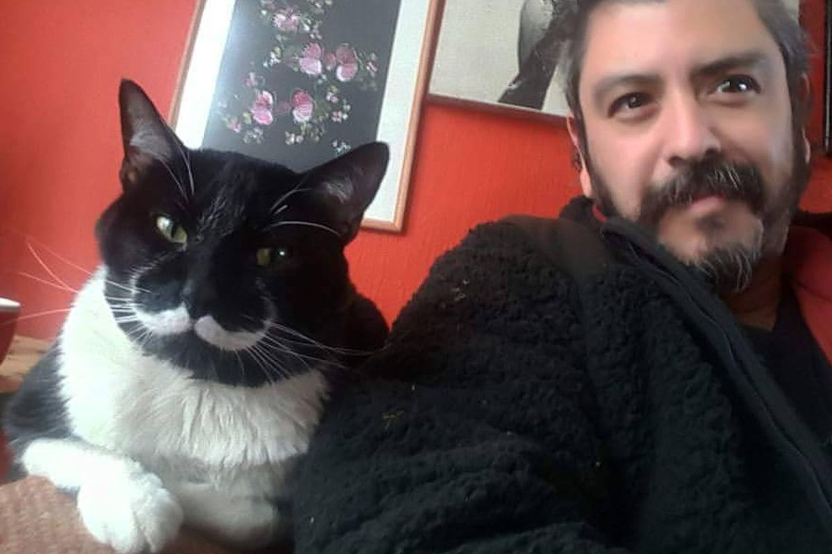 Man Finds Tuxedo Cat with Purrfect Stache and Gentle Heart