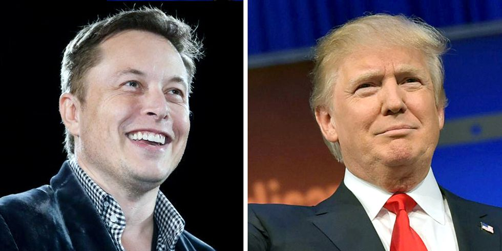 Can Elon Musk Influence Trump to Take Climate Action?