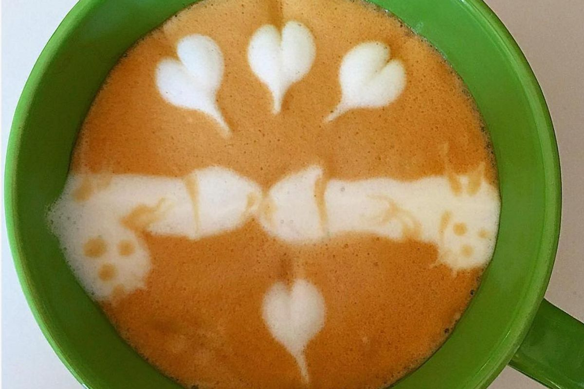 You Should Follow This Account Dedicated To Dick Latte Art