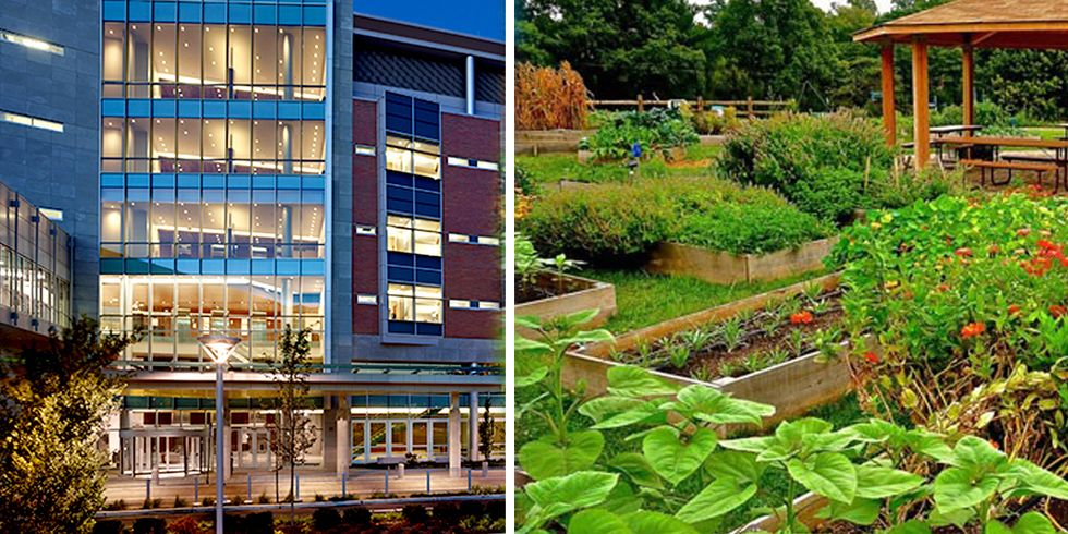 This Hospital Prescribes Fresh Food From Its Own Organic Farm