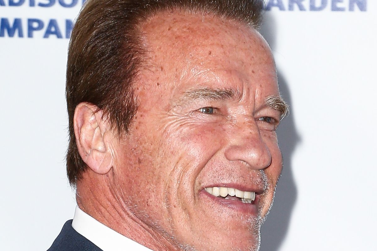 "Arnold Schwarzenegger Says The Sight Of His Aging Body Makes Him Want To ""Throw Up"""