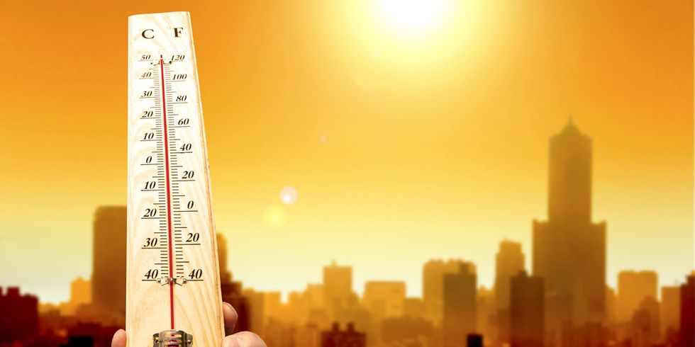 Earth on Pace for Its Warmest Year on Record
