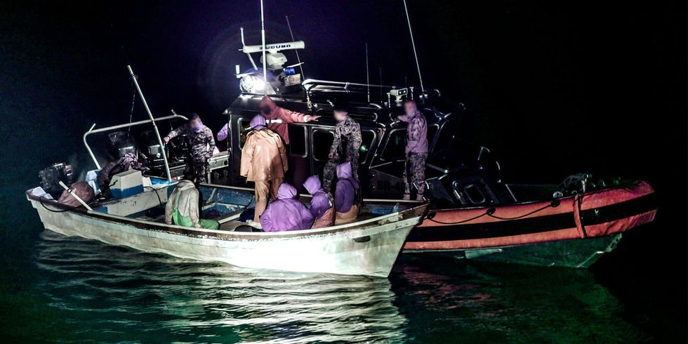 Poachers Arrested by Mexican Navy to Save the Nearly Extinct Vaquita