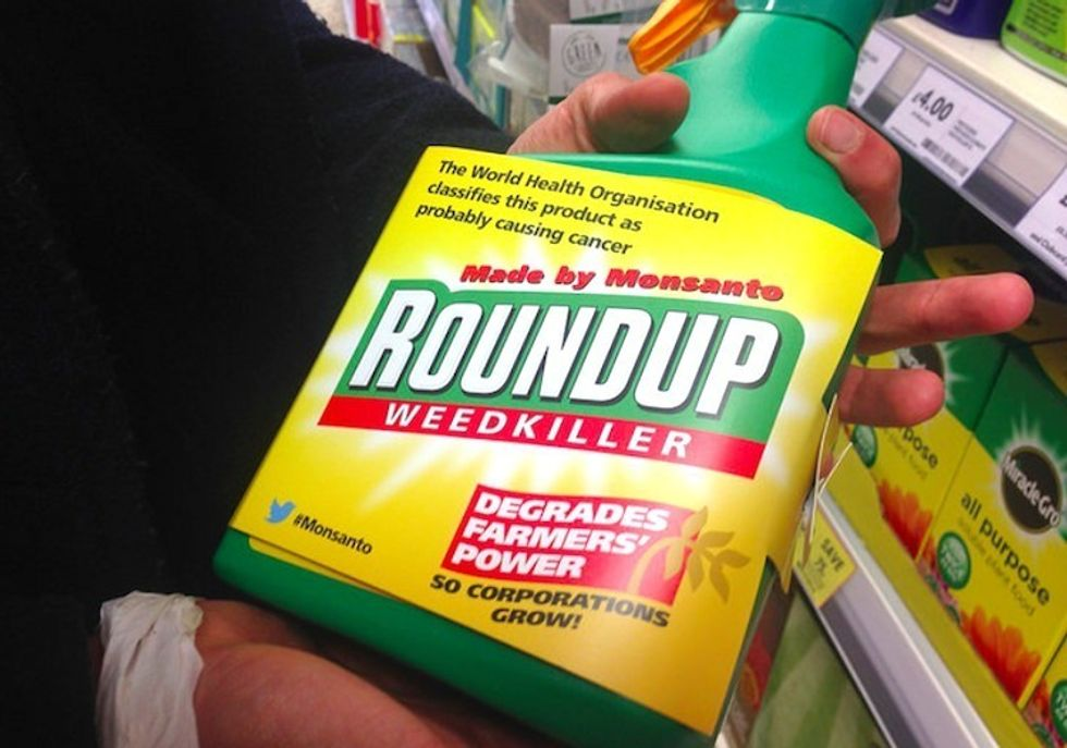 Monsanto's Roundup Linked to Fatty Liver Disease