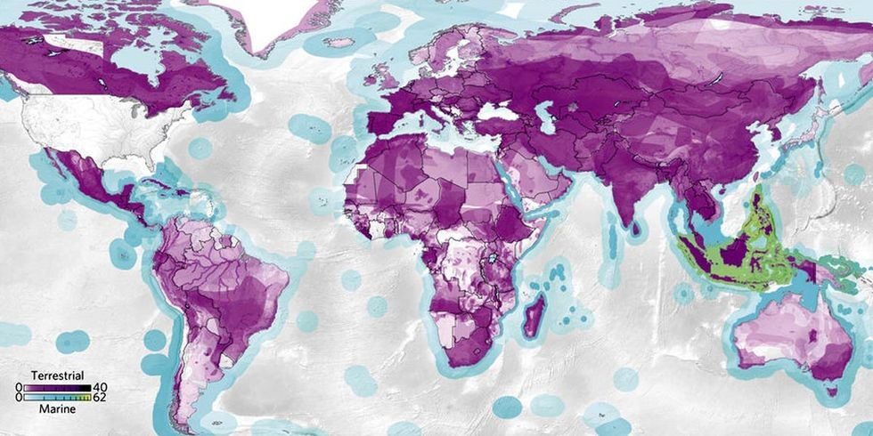 This Map Shows How Your Consumption Habits Impact Wildlife Thousands of Miles Away