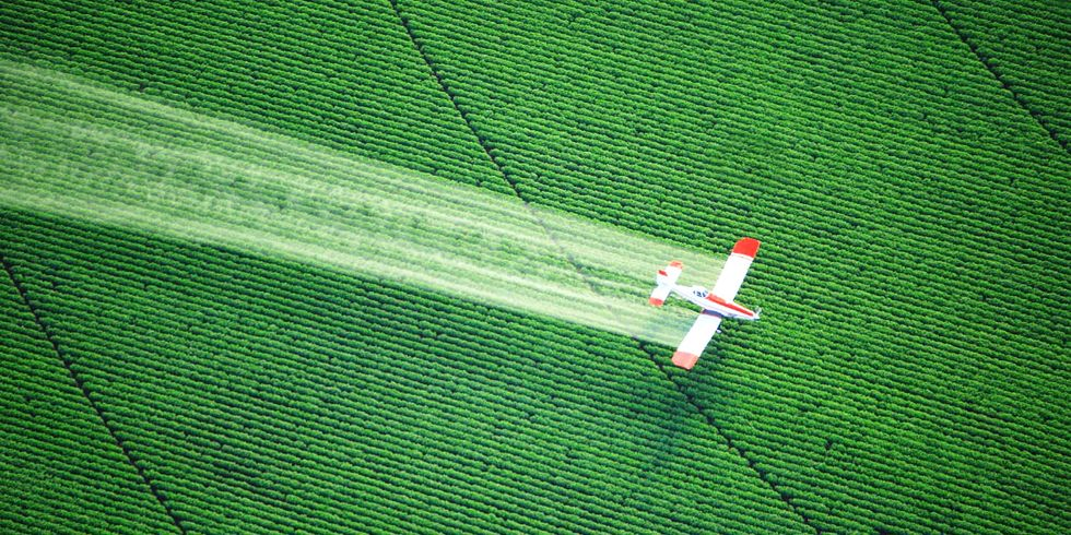 97% of Endangered Species Threatened by Two Common Pesticides