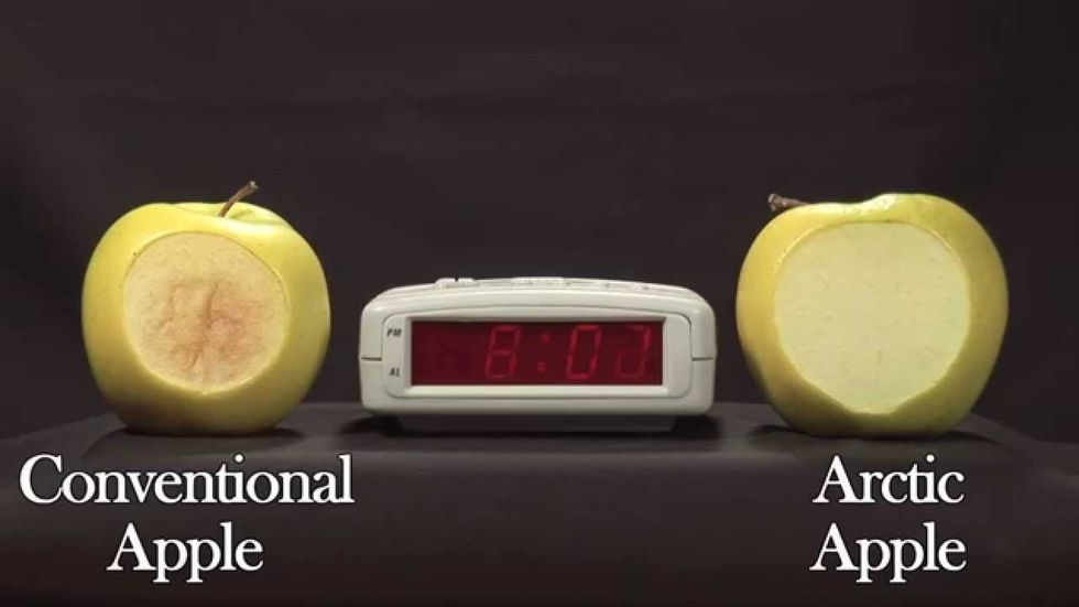 GMO Arctic Apples to Hit Shelves Next Month Without Clear Labeling