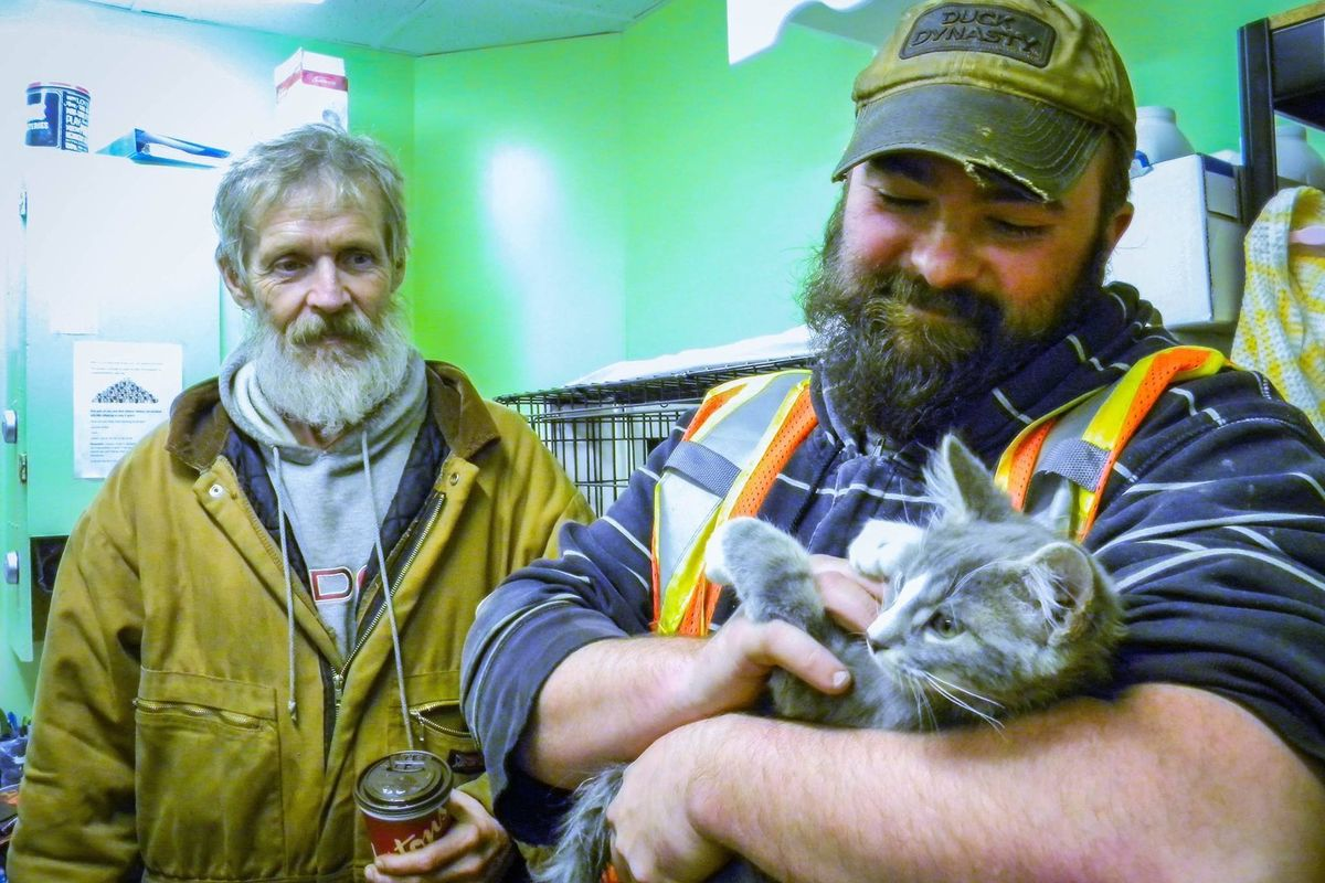 Men Save Kitten Frozen in Snowbank and Bring Him Back to Life