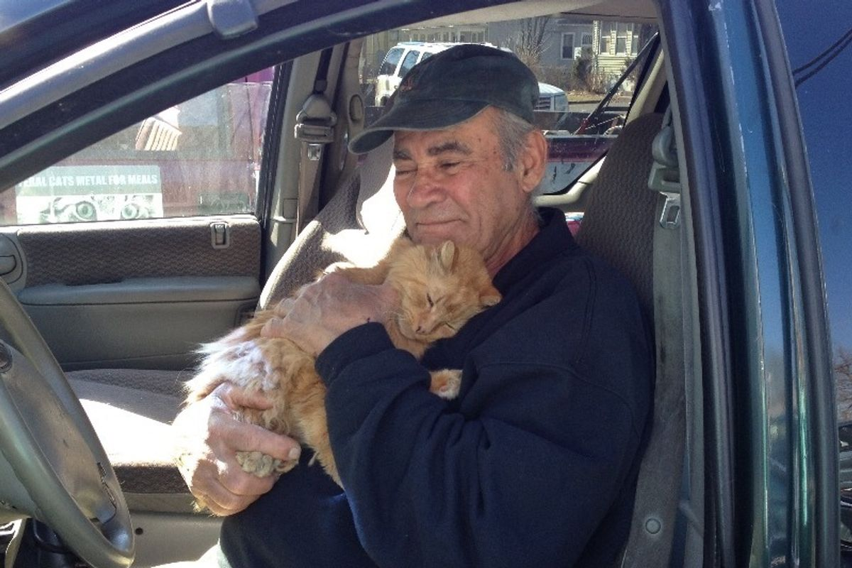 Scrap Metal Worker Feeds Neighborhood Cats, Hasn't Missed a Day in 22 Years..