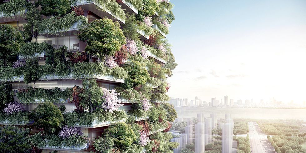Asia's First-Ever Vertical Forest Will Produce 132 Pounds of Oxygen Each Day