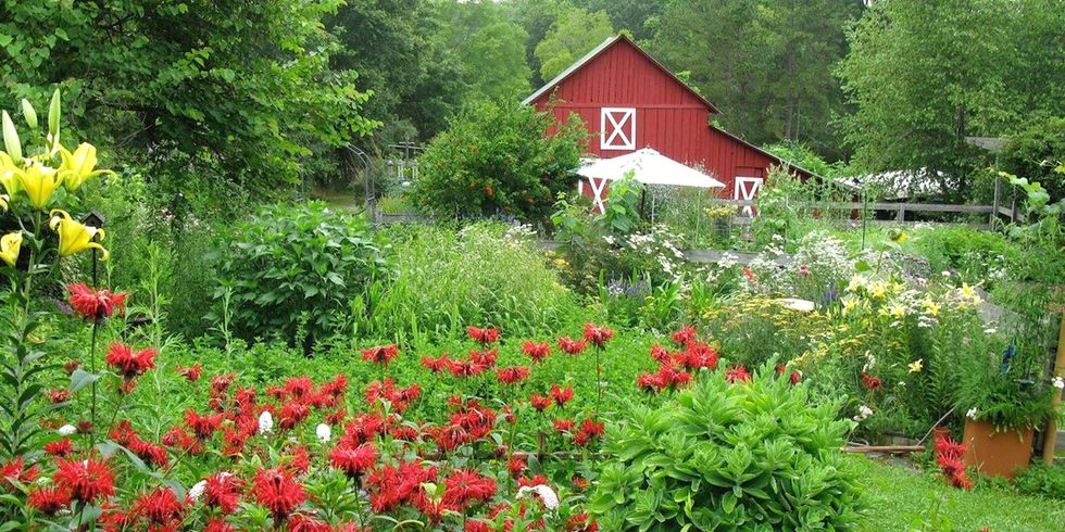 This 13-Acre Organic Farm Can Be Yours for Just 200 Words
