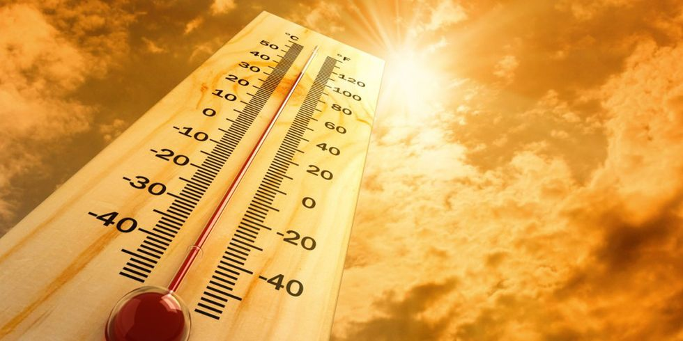 Calendar Says February, But Record Temps Feel Like August