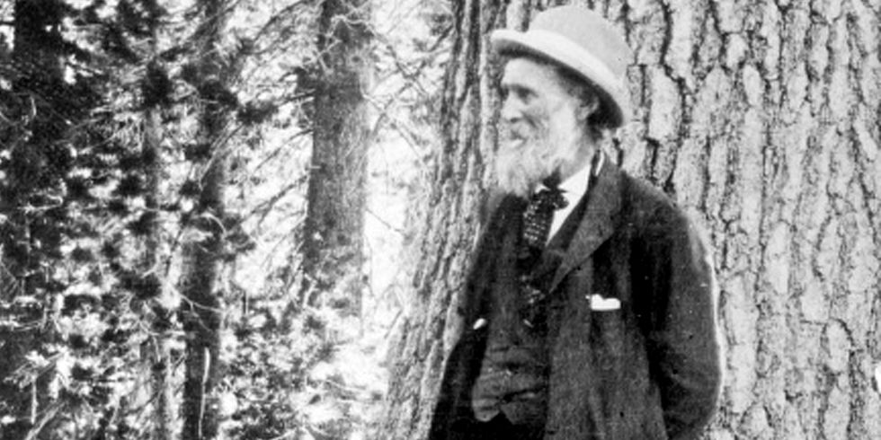 'John Muir Is Rolling Over in His Grave' With Scott Pruitt at the Helm of the EPA