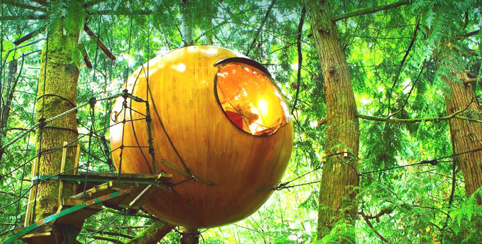 Ready to Escape Into This Magical Treetop Orb?