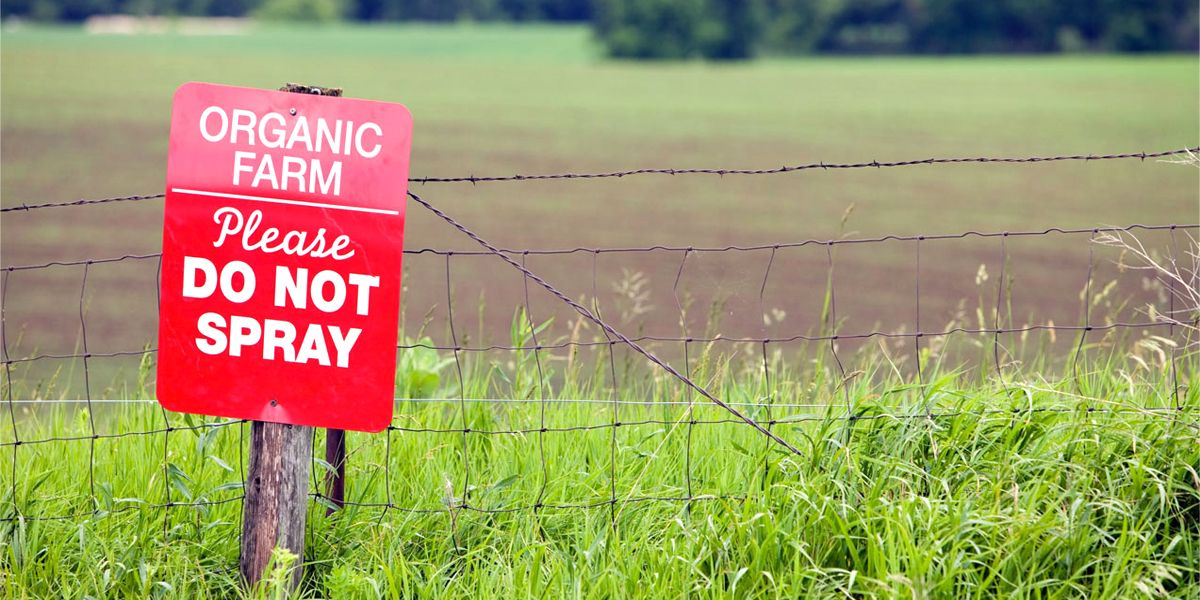 The 4-Minute Rule for Organic Pesticides: Not An Oxymoron