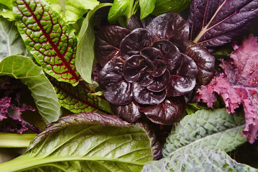 'World's First Post-Organic Produce' Grows at This Vertical Farm