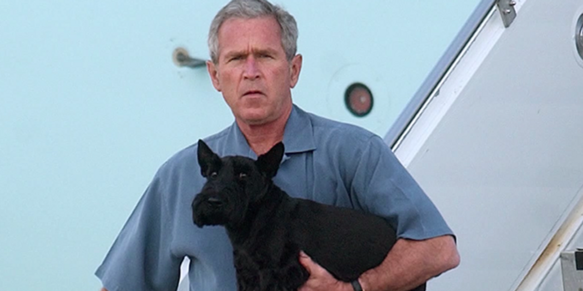 Popular Artist George W. Bush Went on Television and BodiedTrump