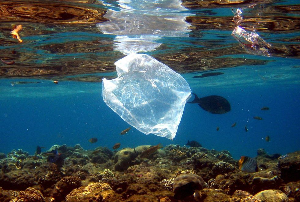Kenya Joins Growing Fight Against Plastic Pollution