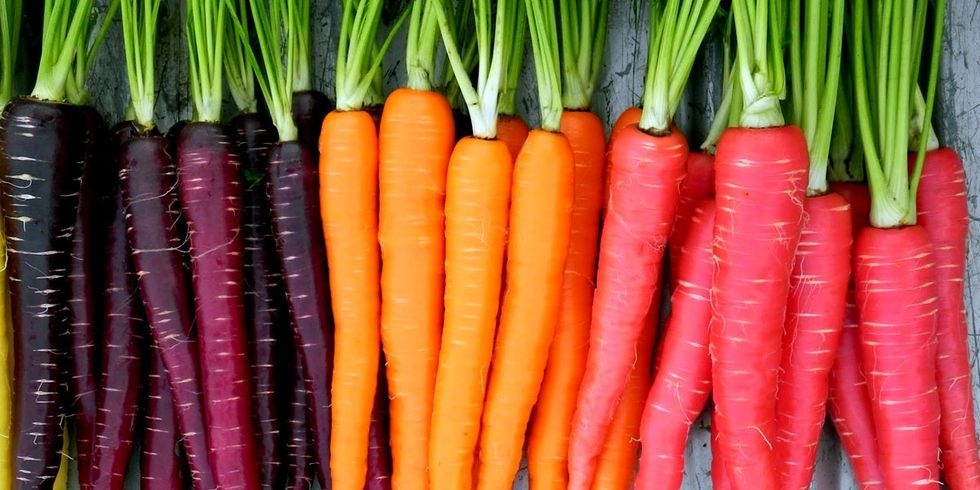How to Meet the Soaring Demand for Organic Food