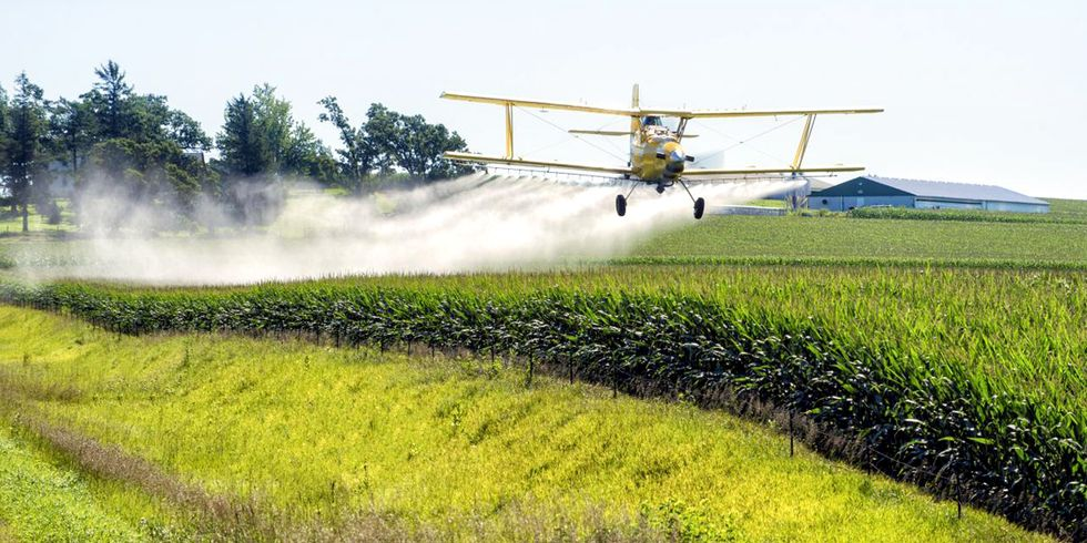 EPA Sued for Approving Dow's Deadly Pesticide Combo