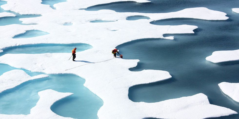 Sea Ice Falls to Record Lows in Both the Arctic and Antarctic
