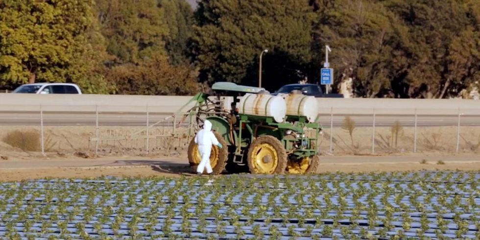 How to Feed the World Without Destroying the Planet