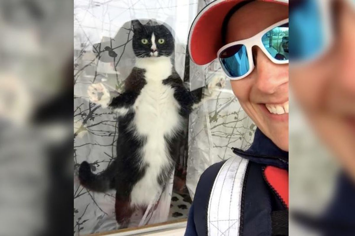 """Mail Carrier is """"Greeted"""" by a Feisty Little Fella Every Day.."""