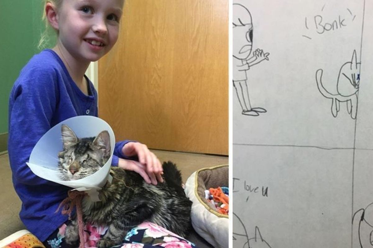 8 Year Old Girl Draws Pictures of Her Life with Blind Cat  Until Her Parents Let Her Adopt Her..