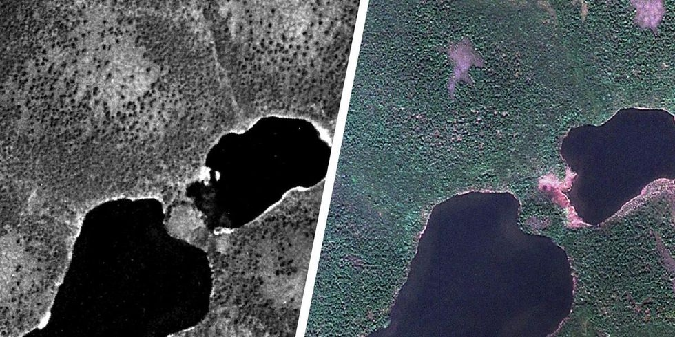 Spy Images From Cold War a 'Gold Mine' for Climate Scientists