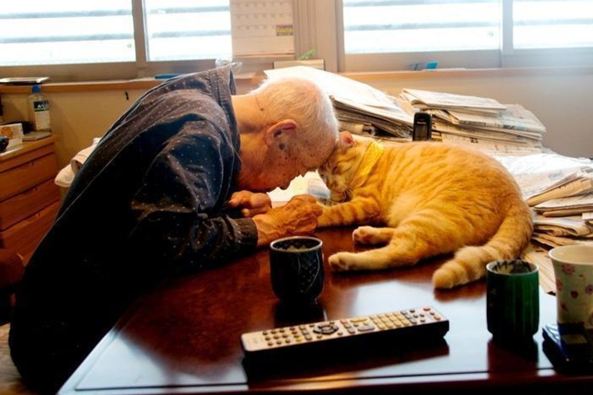 """""""I Got A Cat For My Sick And Grumpy Grandpa, and He Turned His Life Around"""""""