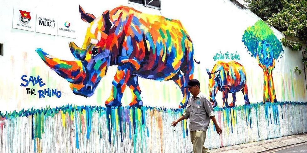Graffiti Campaign Inspires Protection of Endangered Rhinos