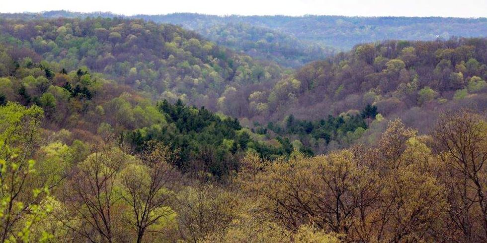 Groups Sue Feds to Halt Fracking in Ohio's Only National Forest