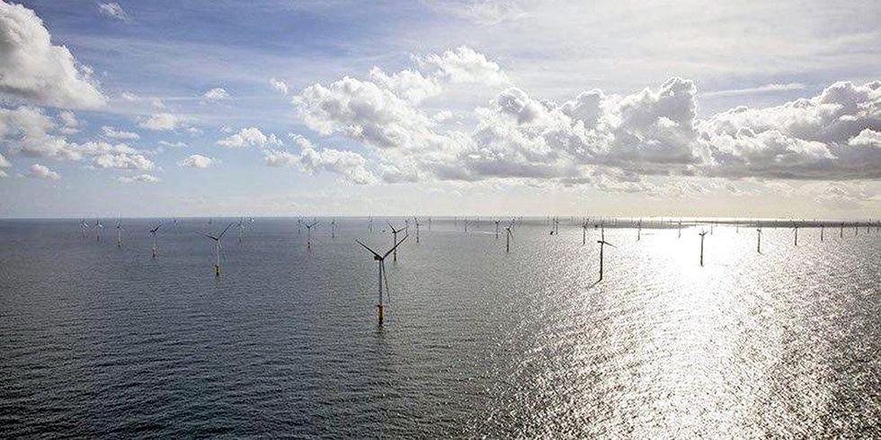 Giant Dutch Offshore Wind Farm Delivers Clean Energy to 1.5 Million People