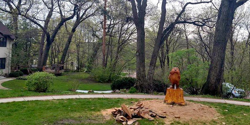 The Lorax Pops Out of a Tree Stump Thanks to Minnesota Chainsaw Artist