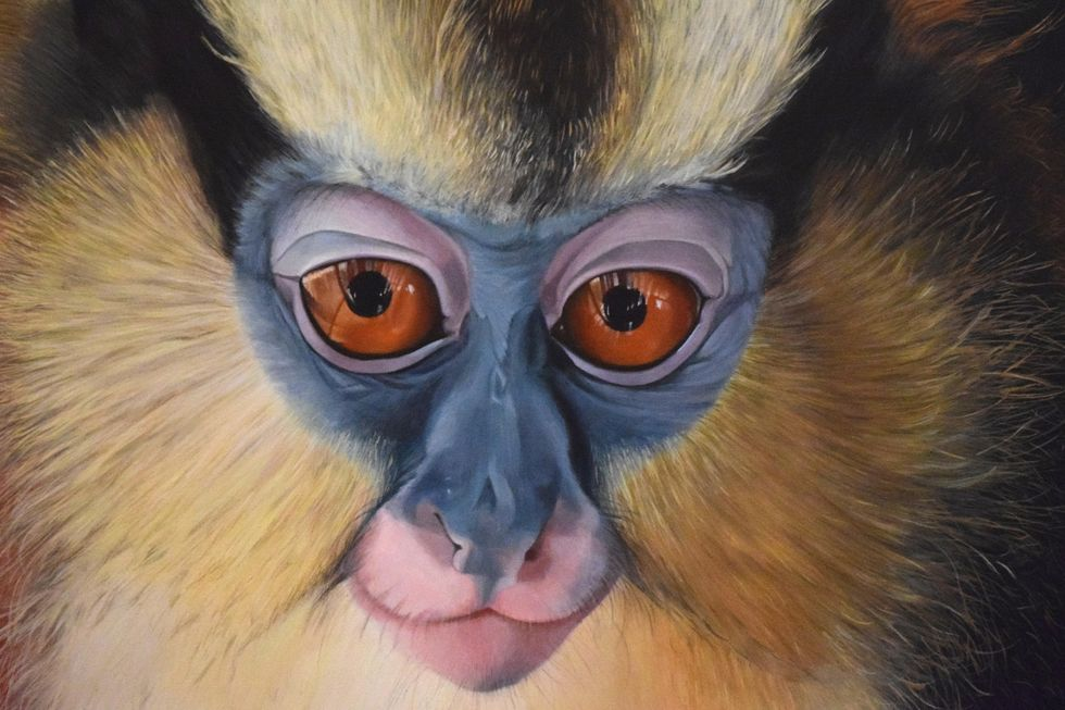 Stunning Paintings Send Strong Message on Need to Protect Primates