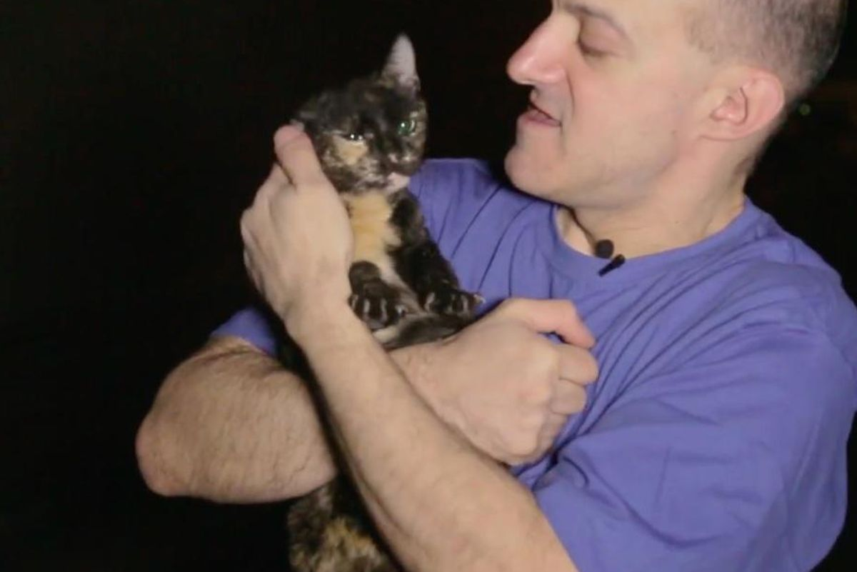 Cat Man Never Misses a Day in 10 Years Caring for Hundreds of Strays Even When Others Are Against Him...