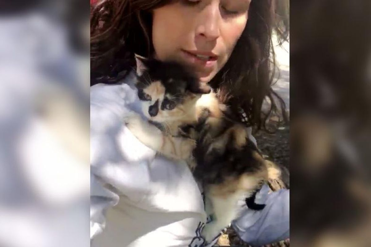 Woman Hugs a Kitten No One Wanted, the Kitty Won't Let Her Go...