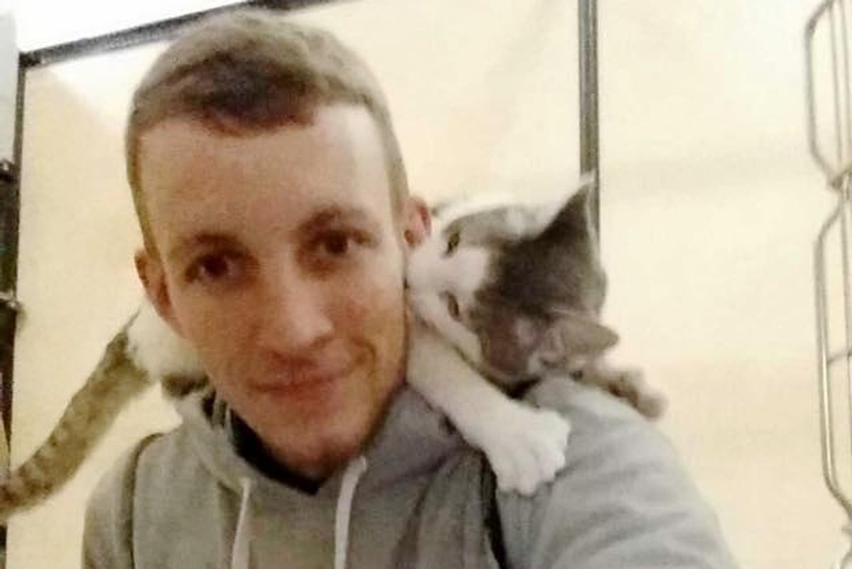 Shelter Cat Climbs on Man's Shoulders Asking Him to Be His Forever Human...