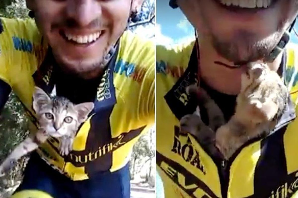 Kitten Can't Stop Kissing Cyclist Who Saved His Life...