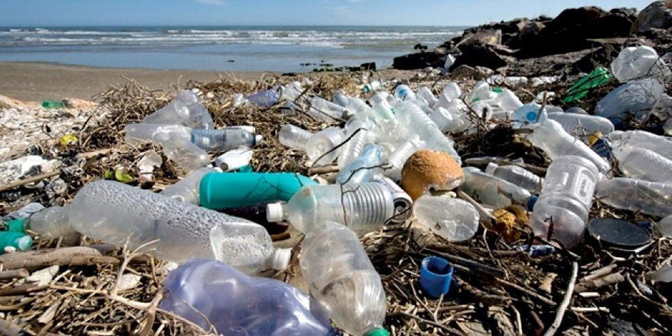 Prince Charles: It's Time to Solve the 'Human Disaster' of Plastics in the World's Oceans