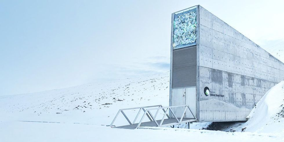 'Doomsday' Seed Vault Flooded After Arctic Permafrost Melts