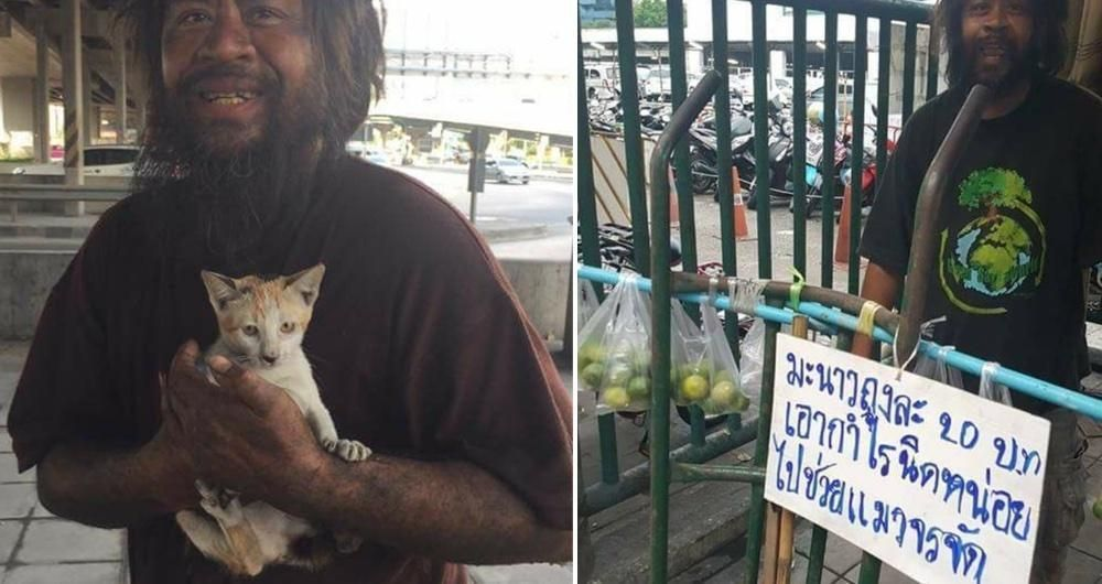 Homeless Man Always Feed Stray Cats Before Himself Every Day