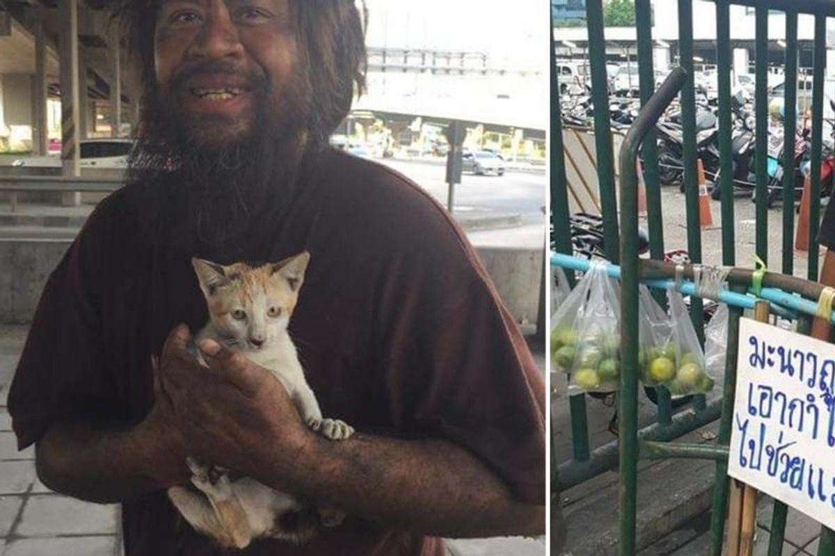 Homeless Man Raises Funds to Feed Stray Cats Before Himself Every Day...