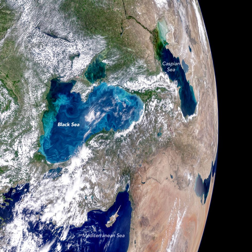 Black Sea's Stunning Plankton Bloom Can Be Seen From Space